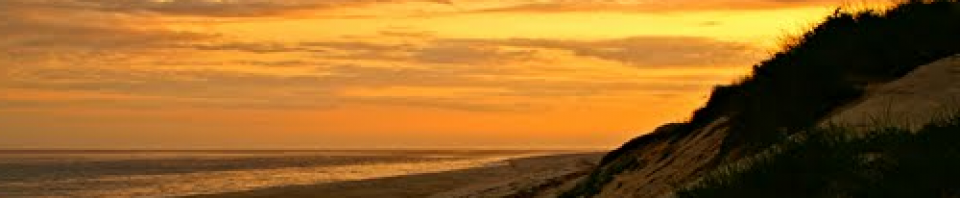 cropped-Sunset-2